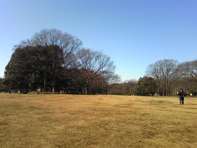 100124_砧公園