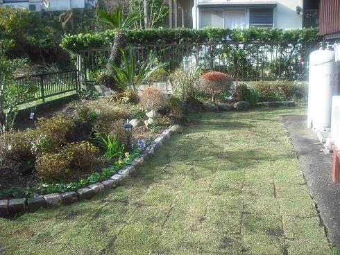 12-5南の芝