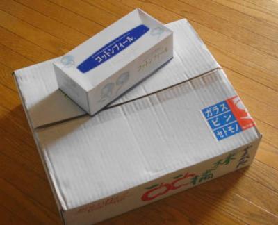 秋映りんご 5キロ入り箱