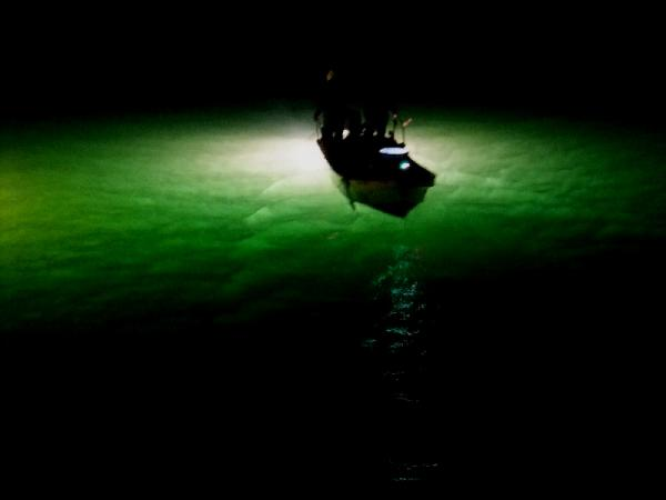 シラス漁16