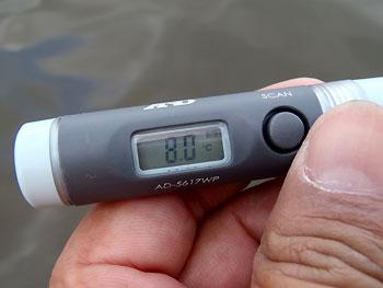 水温8.0・・・多分2度位下がってます