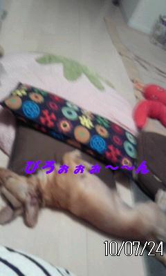 CA4E90ZJ_20100724205538.jpg