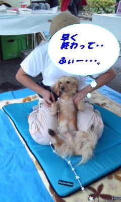 CA4QY7BI.jpg
