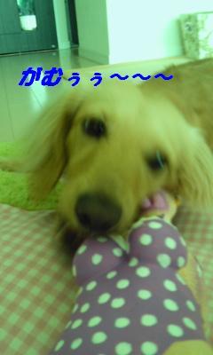 CA5JYQ29.jpg