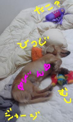 CAOJJLDT_20100605214726.jpg