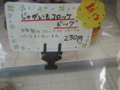 2010_02250007.jpg