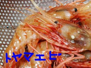 snap_gheegoma_201165165916.jpg