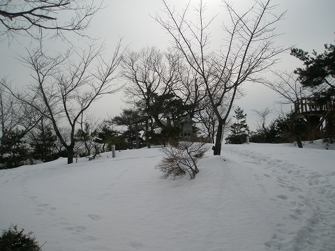 P2010026.jpg
