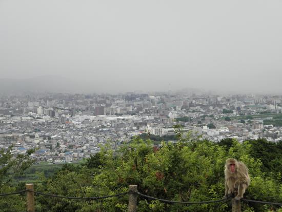 2011 0805 雨