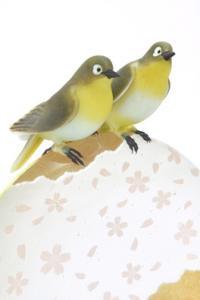 桜に夢見て 1