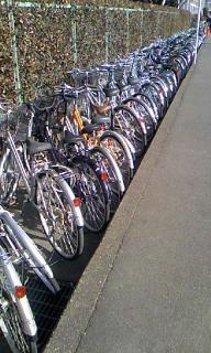 自転車のお堀