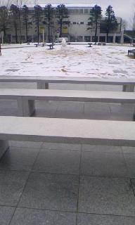 もう綺麗じゃない雪の絨毯