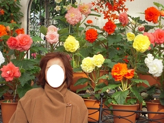 お花畑と・・・