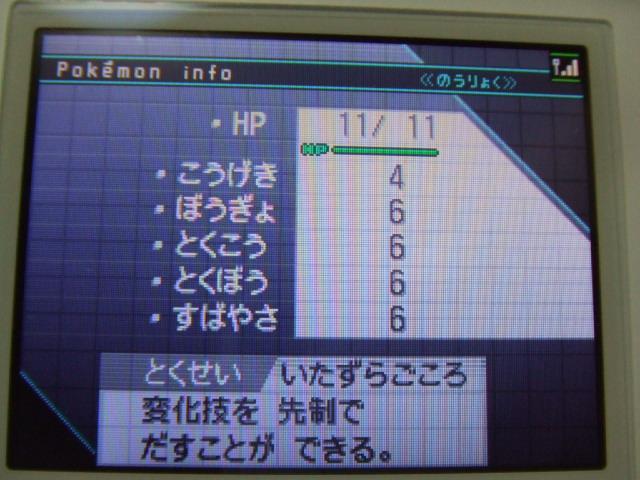 DSCF2837.jpg