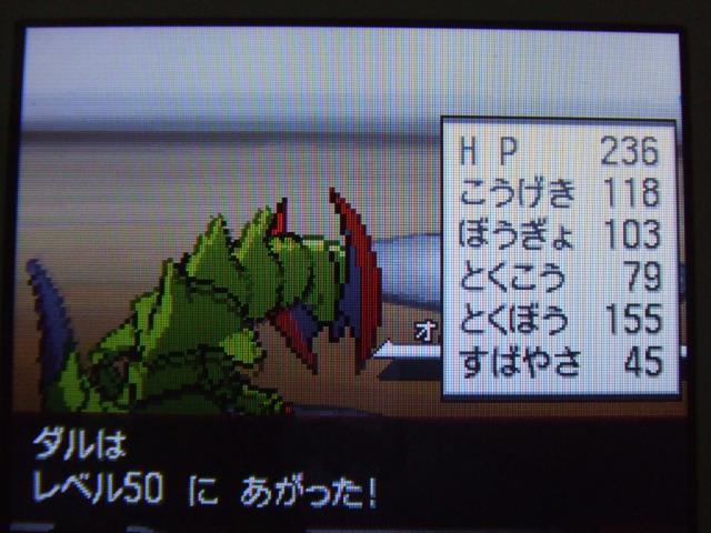 DSCF3002.jpg