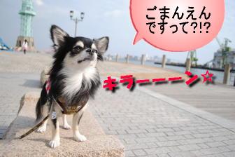 五万円?!