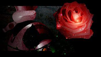 rosen-flat_r2_s.jpg