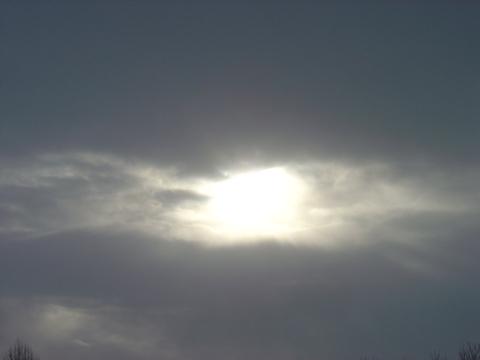 神秘の目(2010.01.29)