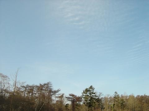 職場地方の空(2009.12.02)