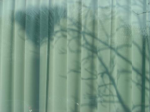 職場地方の影?(2009.12.02)