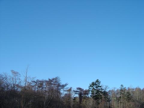 抜けるような青空(2009.12.04)