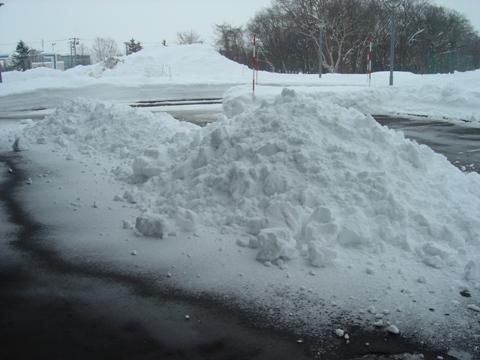 下ろされた雪(2010.01.20)