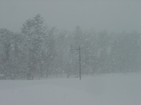 吹雪の職場地方(2010.01.21)