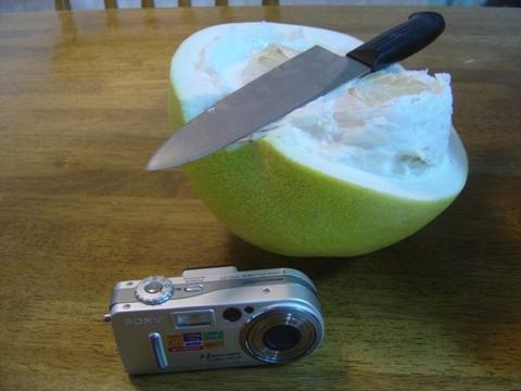 巨大柑橘類(2010.01.21)