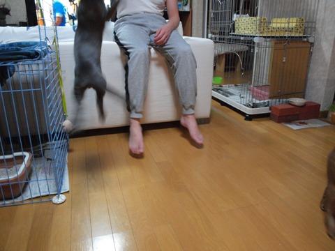 隠れた才能?03(2010.01.21)