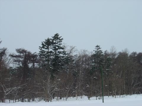 どんより職場地方(2010.01.25)