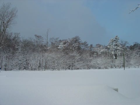 吹雪の前(2010.01.26)