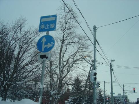 停止線標識(2010.02.02)