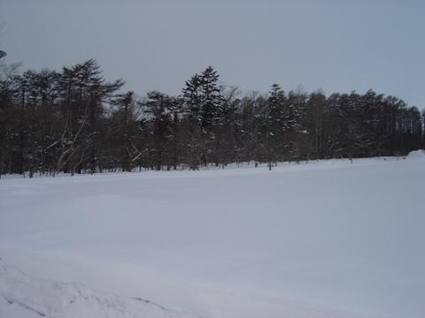 真冬の職場地方(2010.02.03)
