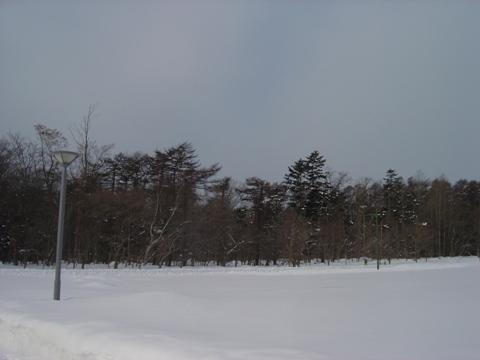 今日も寒い職場地方(2010.02.05)