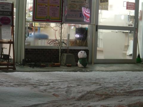 雪だるま、います(2010.02.10)
