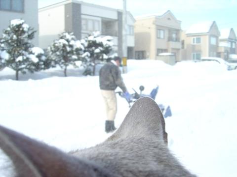 お外04(2010.02.13)