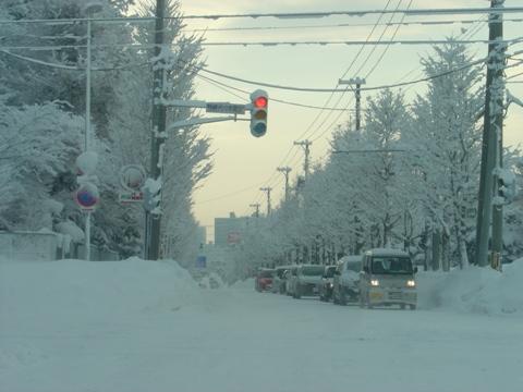 まるで真冬(2010.02.16)