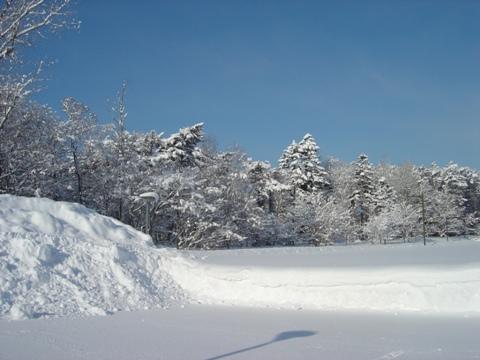青空と雪(2010.02.17)