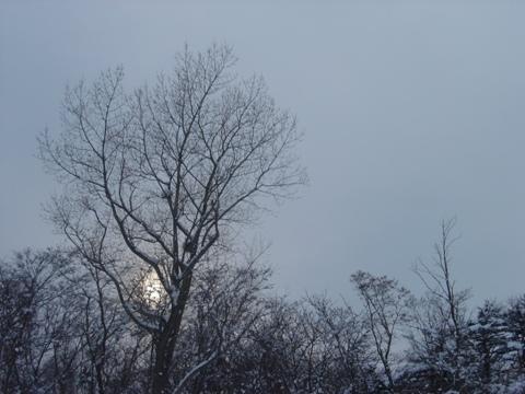 日が長い(2010.02.18)