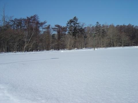 まだ雪です(2010.03.02)