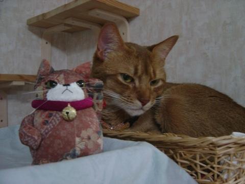 コジョジョ&ジョゼ01(2010.03.12)