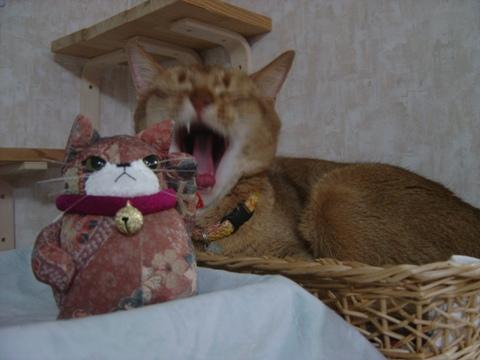 コジョジョ&ジョゼ02(2010.03.12)