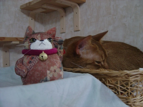 コジョジョ&ジョゼ03(2010.03.12)