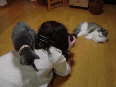 カメラマンは大変!(2010.03.17)