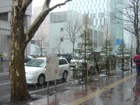 まだ雪が降る02(2010.03.23)