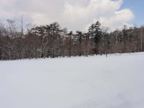 4月2日の雪(2012.04.02)