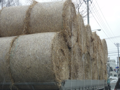 4月6日の牧草ロール(2012.04.06)