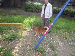 May9_2010_5.jpg