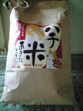 hachi_kome2.jpg