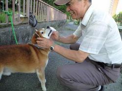 hamigaki_08212010_2.jpg